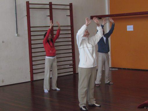 movimiento 1 nivel cajas arriba y abajo